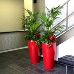 Creative Interior Plantscapes - Interior Plants